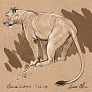 Masai Lioness Art Print by Aaron Blaise