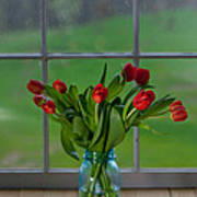 Mason Jar With Tulips Print by Kay Pickens