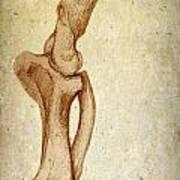 Mastodon Leg Bones Art Print
