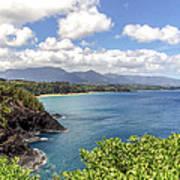 Maui Coast Art Print