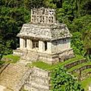Mayan Temple Art Print