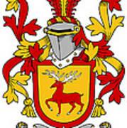 Mccartney Coat Of Arms Irish Art Print