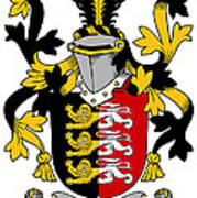 Mcconsidine Coat Of Arms Irish Art Print