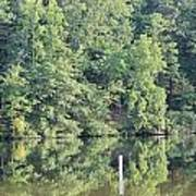 Mckamey Lake Serenity Art Print
