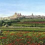 Mdina Poppies Malta Print by Richard Harpum