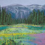 Meadow In The Cascades Art Print