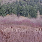 Meadow View Art Print