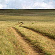 Meandering Path Through The Hills Of Art Print
