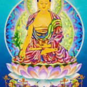 Medicine Buddha 7 Art Print
