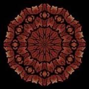 Medicine Wheel Dragonspur Fractal K12-3 Art Print