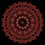 Medicine Wheel Dragonspur K12-5 Art Print