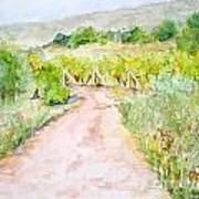 Medjugorje Path To Apparition Hill Art Print