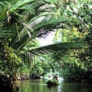 Mekong Delta Backwater 01 Art Print
