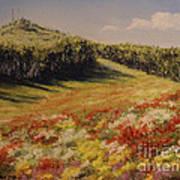 Melkow Trail  Art Print
