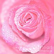 Melting In Pink Art Print