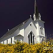 Mendocino Presbyterian Church Print by Ron Sanford
