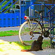 Meow Cat In Verdun Waiting By The Step Beautiful Summer Montreal Pet Lovers City Scene C Spandau Art Print