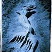 Mermaid Print by Tony V Martin