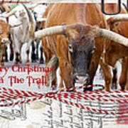 Merry Christmas From The Trail Art Print