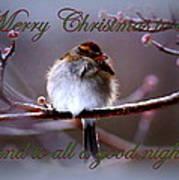 Merry Christmas To All Art Print