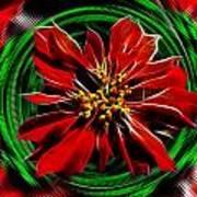 Merry Xtmas - Poinsettia Art Print