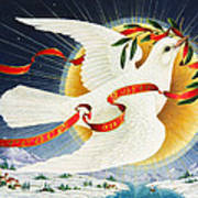 Messenger Of Peace Art Print