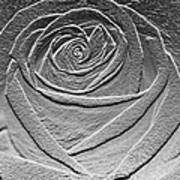 Metal Rose Art Print