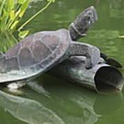 Metal Turtle Art Print