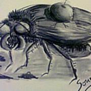 Metamorphosis Art Print by Soumya Bouchachi