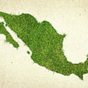 Mexico Grass Map Art Print by Aged Pixel