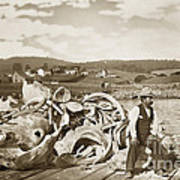 Michael Noon Sitting On A  Pile Of Whale Bones Monterey Wharf  Circa 1896 Art Print