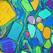 Art And Geology Art Print