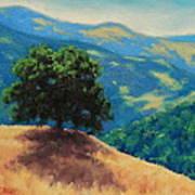 Mid Day On Golden Hills Art Print