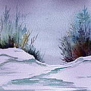 Midday Winter In Maine Art Print