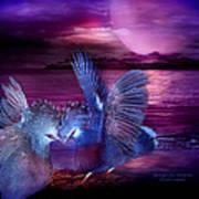 Midnight Blue Rendevous Art Print