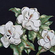 Midnight Magnolia Art Print