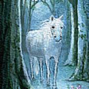 Midsummer Dream Art Print