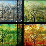Midwest Seasons Collage Art Print
