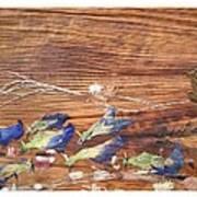 Migrated Birds Art Print