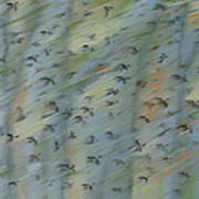 Migratory Geese Moon April Art Print by Ethel Vrana