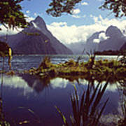 Milford Sound In New Zealand's Fiordland National Park Art Print