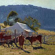 Milking Time. Araluen Valley Art Print