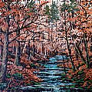 Mill Creek Art Print by W  Scott Fenton