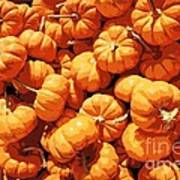 Mini Pumpkins Art Print