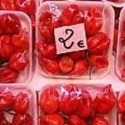 Mini Red Peppers Art Print