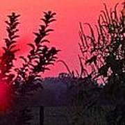 Mini Sunset Art Print