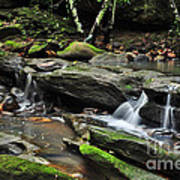 Mini Waterfalls Art Print by Kaye Menner