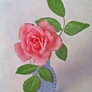 Miniature Rose IIi Art Print
