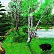 Minnesota Birch Lake And Bear Art Print