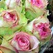 Mint Julep Bouquet Art Print